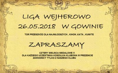 Turniej Klubowy Liga Wejherowo